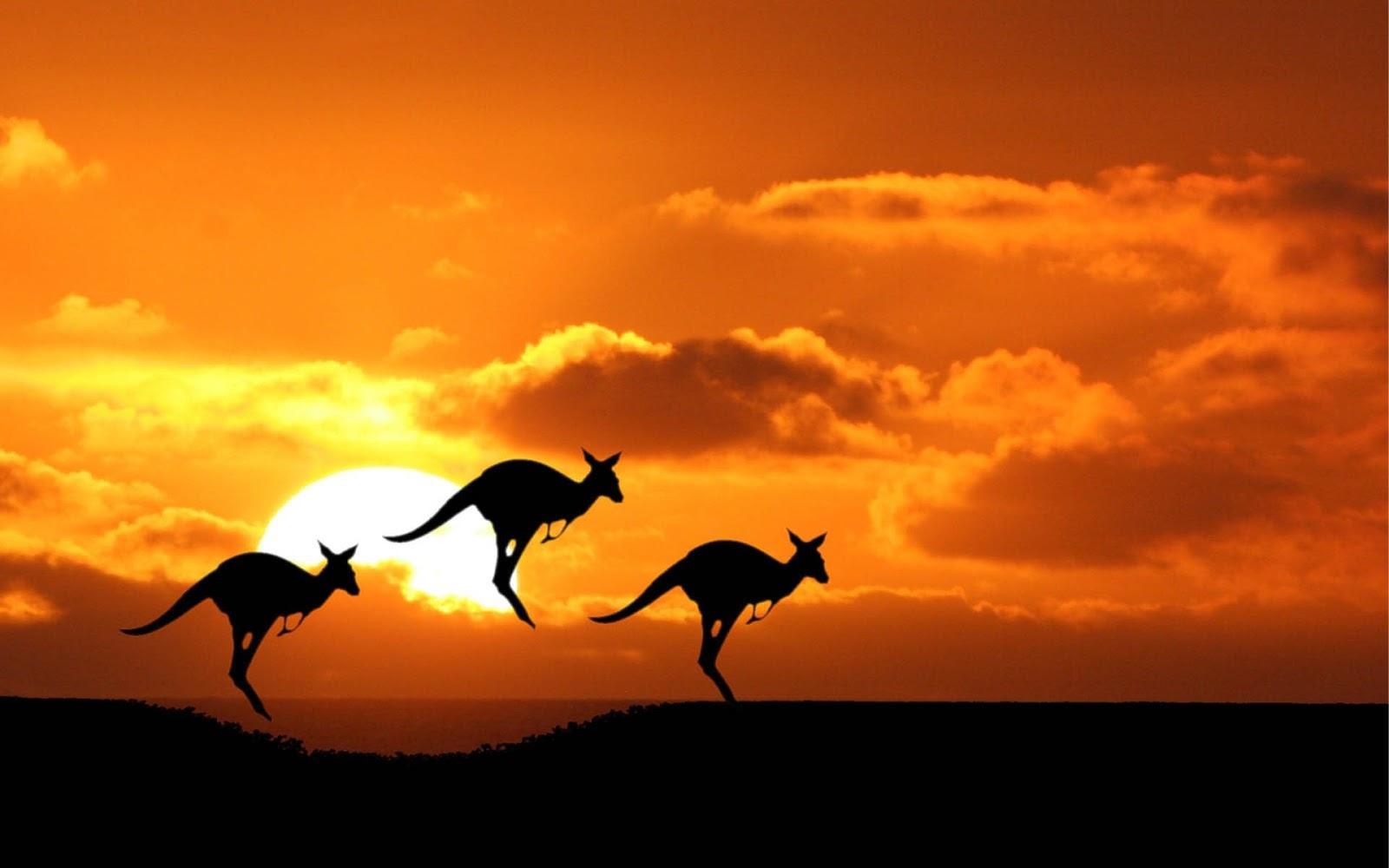 有移民倾向的福建学生真的拿不到澳洲签证吗?